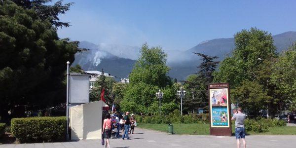 Лесной пожар в Ялте локализовали на площади 1,2 гектара